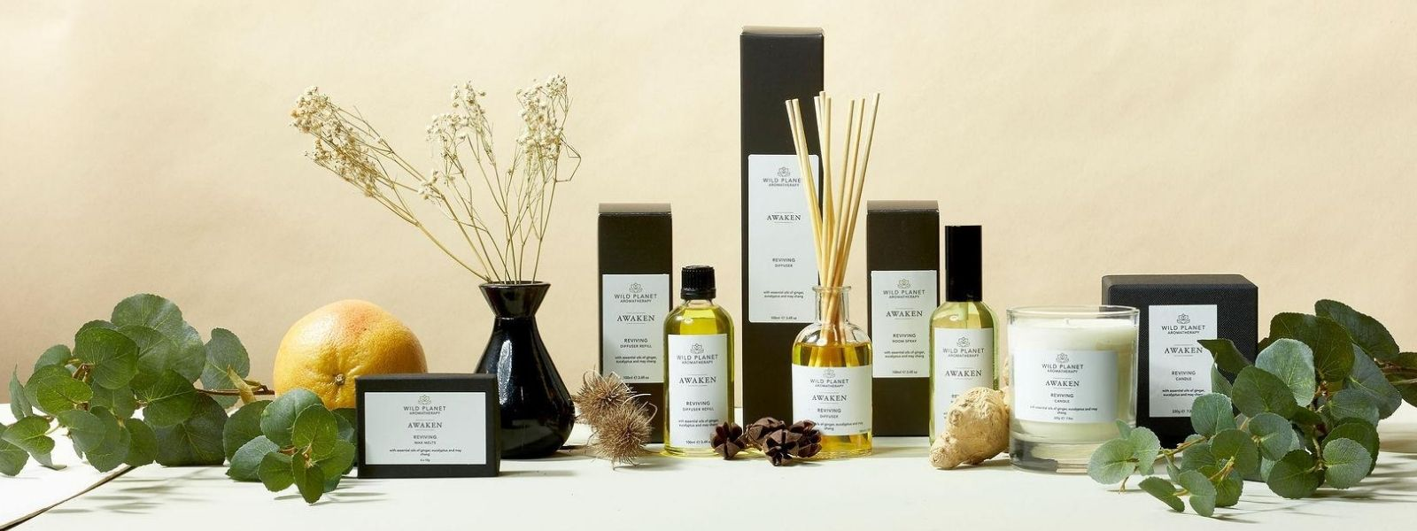 Awaken Reed Diffuser, Room Spray, candle and wax melts by Wild Planet Aromatherapy next to fresh ginger, grapefruit and eucalyptus
