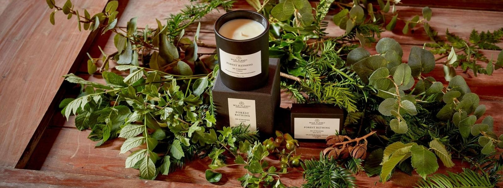 Forest Bathing Home Fragrance Collection with candle on box next to box of wax melts on wooden table with green foliage by Wild Planet Aromatherapy
