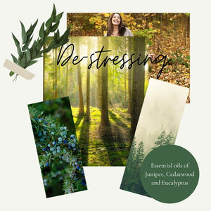 Photographs of forests and eucalyptus leaves by Wild Planet Aromatherapy