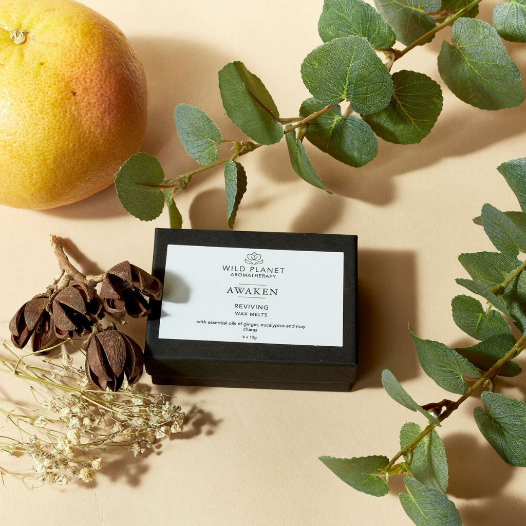 Awaken reviving luxury wax melts in box next to eucalyptus, dried flowers and grapefruit