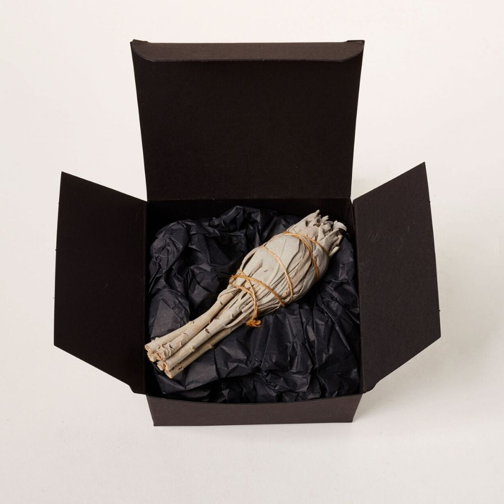 Pure White Sage Smudge Stick in open black box with instruction card by Wild Planet Aromatherapy