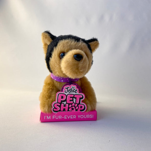 Teddy Justice Pet Shop