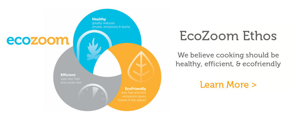 EcoZoom - About Us