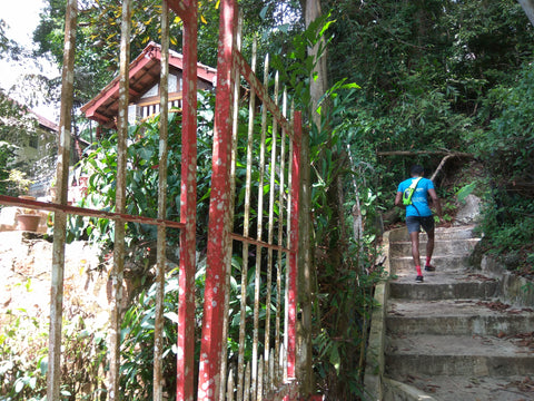 ash be nimble founder hui mathews hikes up penang hill