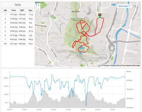 ash be nimble founder hui mathews - strava race analysis
