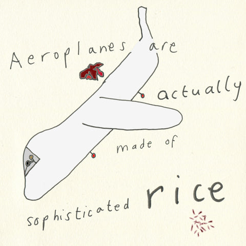 Square panel with a paper background. The aeroplane from the previous panel is reproduced here, angled so it is pointing to the bottom left corner. The haemorrhoids from the title panel are reproduced above the plane. Text runs over the plane, reading: 'Aeroplanes are actually made of sophisticated rice'. Underneath the word 'rice' are some grains of what looks like purple and pink rice.