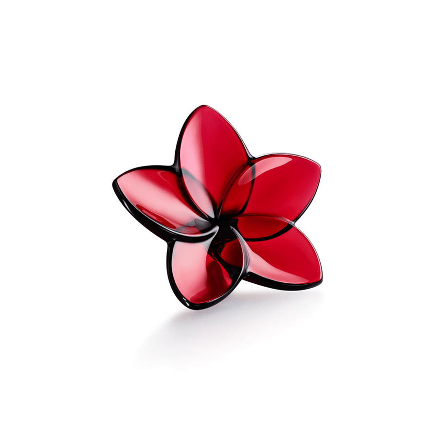 THE BLOOM COLLECTION RED