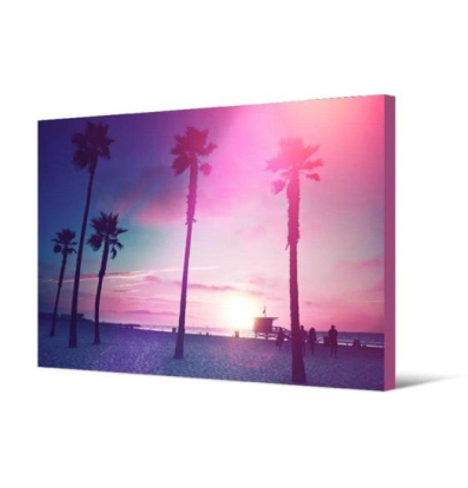 Wall Art - Dreamy Palm