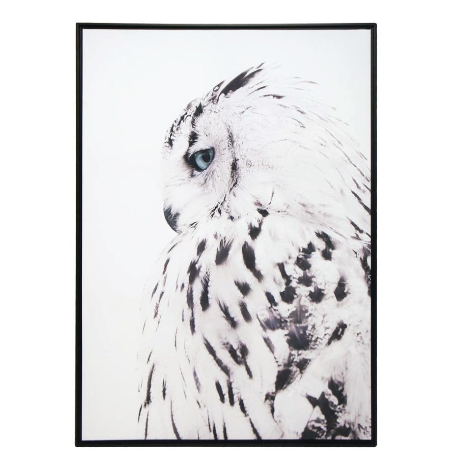 Framed Wall Art - Wise Owl