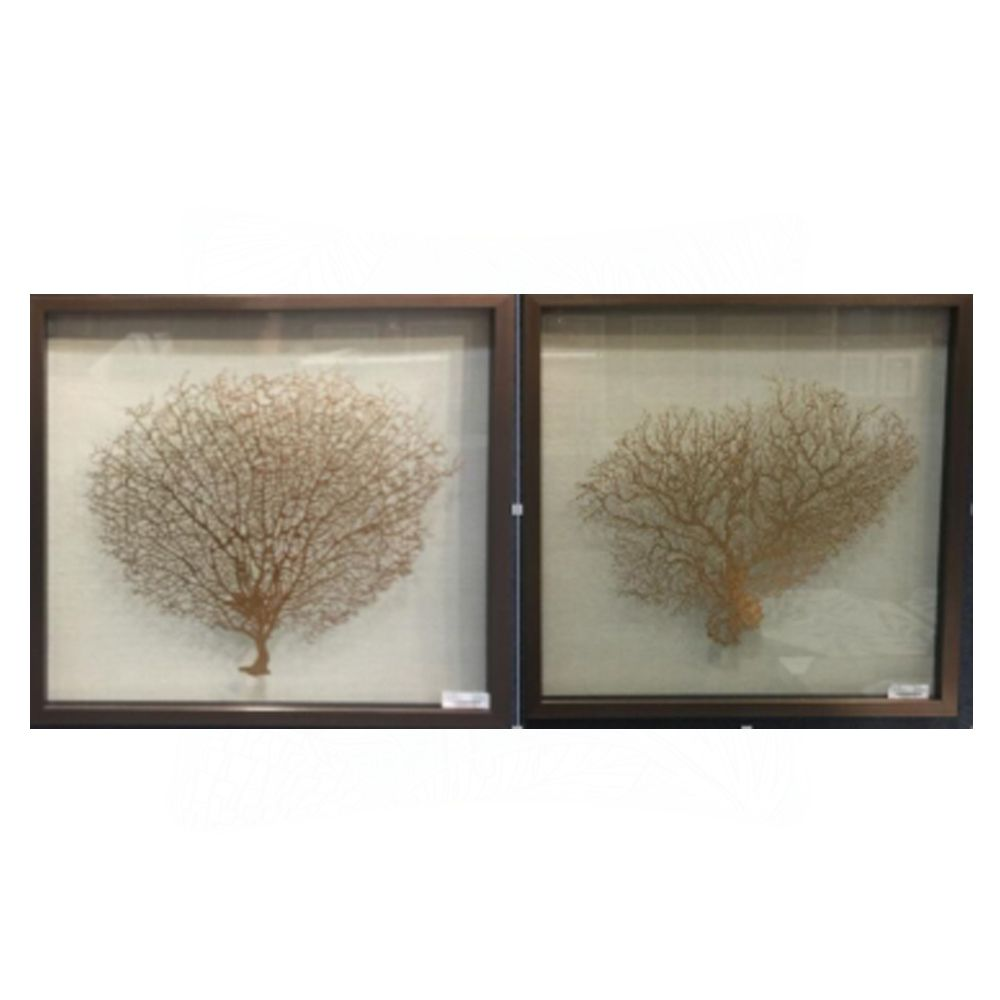 Coral Framed Glass Print