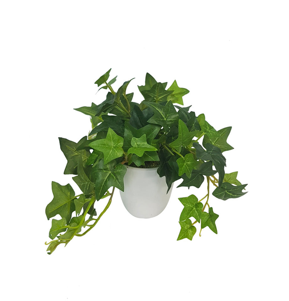 Potted Sage Ivy - Small indoor artificial plant