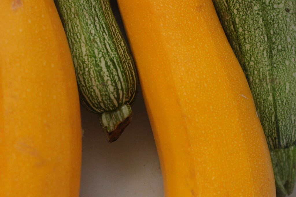 courgettes and yellow squash, close up view
