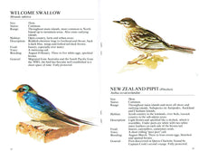 Know Your New Zealand Birds -Pocket Guide (Staple bind)