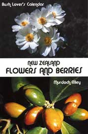 New Zealand Flowers And Berries: A Bush Lover's Calendar (Staple bind)