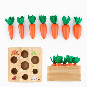 Wooden Toys Baby Montessori Toy Set Pulling Carrot Shape Matching Size