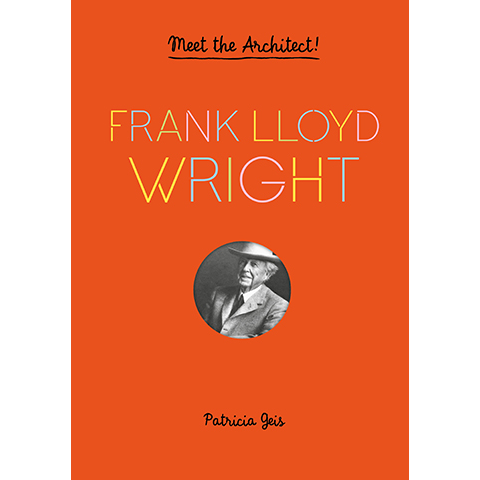 princeton architectural press frank lloyd wright meet the architect patricia geis