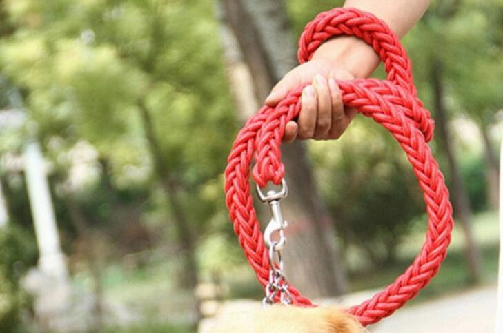 Braided Traction Rope Dog Leash - PetCareSunday