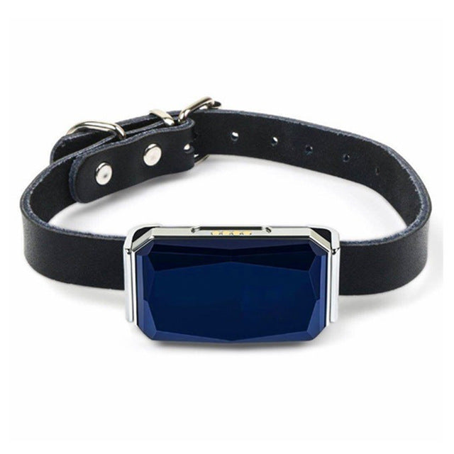 Waterproof Pet Collar With GPS Tracker - PetCareSunday
