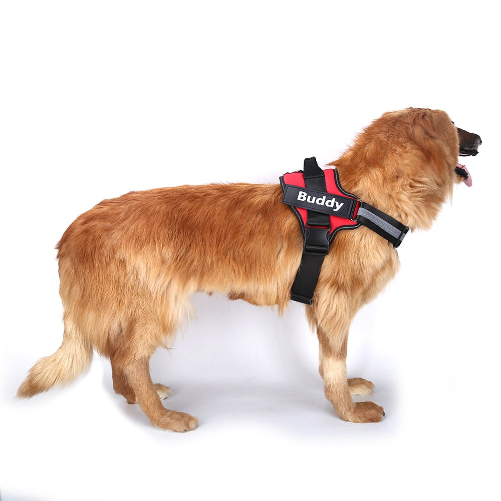 Personalized Dog Harness - PetCareSunday
