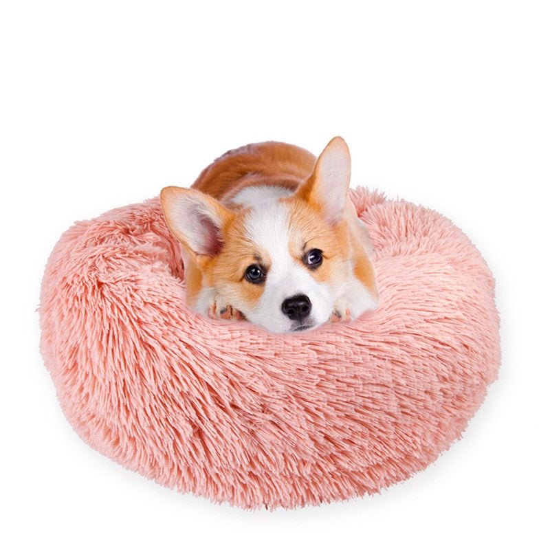 Pain Relief Pet Bed