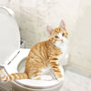 Pet Toilet Training Kit - PetCareSunday
