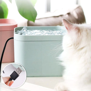 Pet Smart Water Dispenser - PetCareSunday