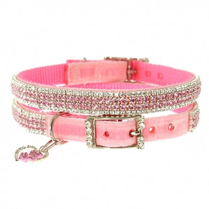 collier pour chien rose strass