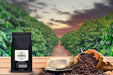 Best Sellers Sample Pack: 6Bean, Cowboy, Breakfast, Peru, Mexico, Bali - Coffee Vibes