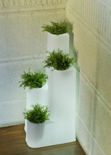 Load image into Gallery viewer, Hyedra Light New Garden Pot