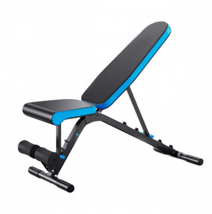 IronLife IR501 Adjustable Utility Bench