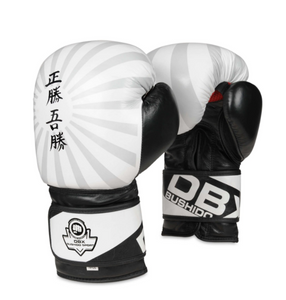 Bushido DBX JAPAN Bloxing Gloves B-2V8 10/12/14oz