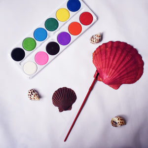 Shell painting kit