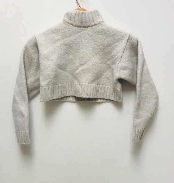 XS / Sweater / Aritzia Wilfred Free / Grey Crop Top