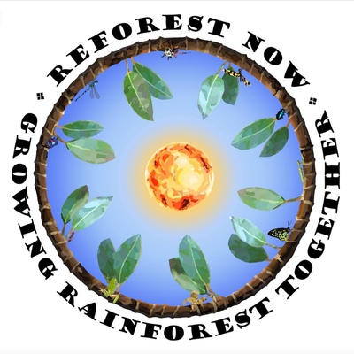 Reforest NoW