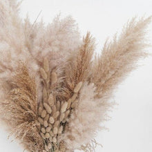 Load image into Gallery viewer, Mini Pampas Grass