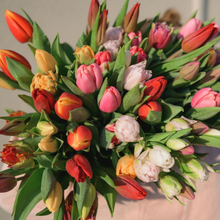 Load image into Gallery viewer, Designer Tulips
