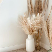 Load image into Gallery viewer, Large Pampas Grass