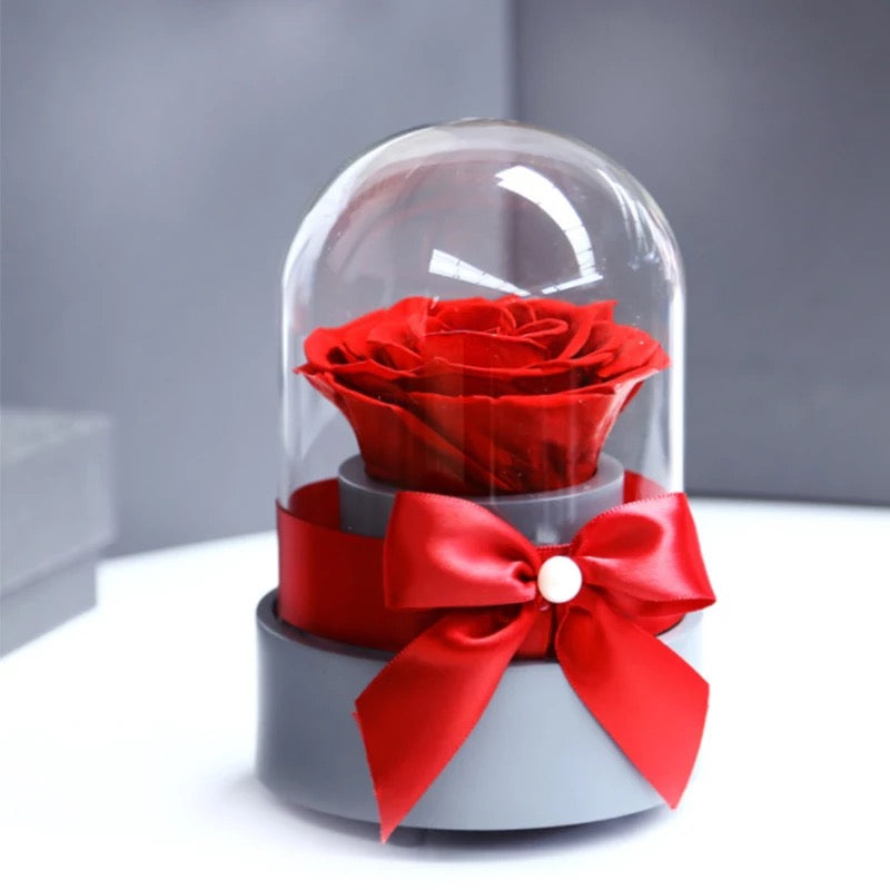 Music Box Rose Dome