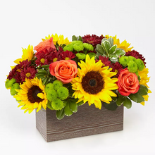 Load image into Gallery viewer, Happy Harvest Arrangement