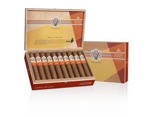 avo sincero fogata full box and single cigar
