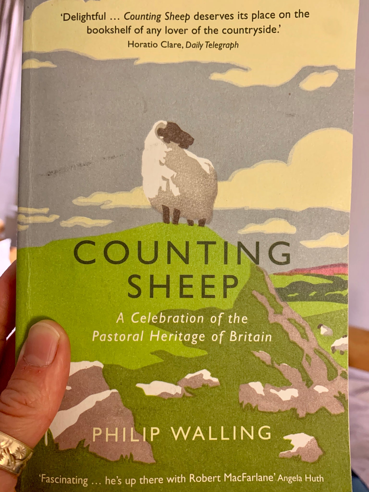 Counting Sheep by Philip Walling, pub. 2015