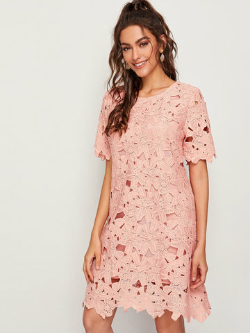Pastel Pink Round Neck Solid Guipure Lace Overlay Dress