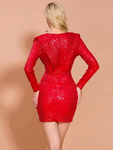 Zip Back Plunge Neck Sequin Bodycon Dress