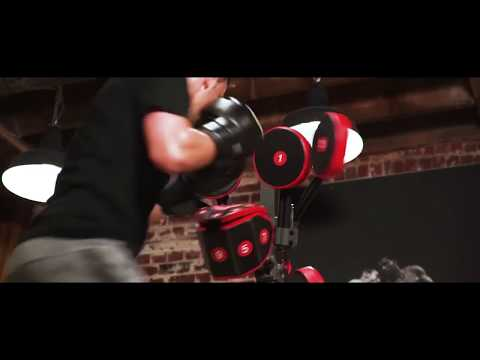 FightMaster Extreme by BoxMaster Boxing Punching Bag System