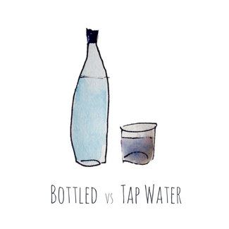 The lowdown on tap water by Amelia Freer