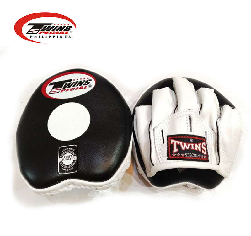 PML 13 Punching Mitts