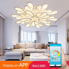 Load image into Gallery viewer, RC Modern LED Chandelier  Fixtures