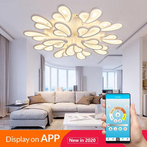 RC Modern LED Chandelier  Fixtures