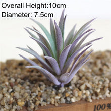 Load image into Gallery viewer, Home Garden Green Purple Red White Blue Flocking Artificial Succulents Plants
