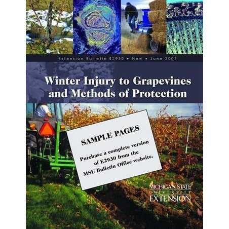Winter Injury to Grapevines - Hard Copy - shop.msu.edu
